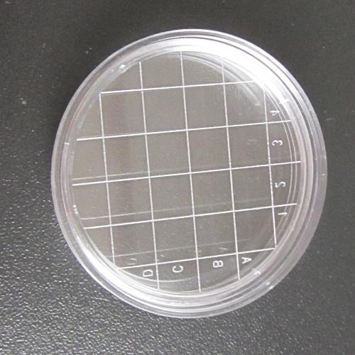 接触碟,可重复使用的接触碟,一次性使用的接触碟